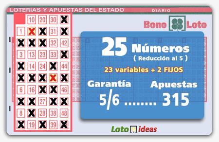 Bonoloto - 25 números (23 + 2 fijos) en reducción al 5 por 315 apuestas